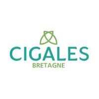 logo_partenaire_financier_cigales_bretagne_bottega